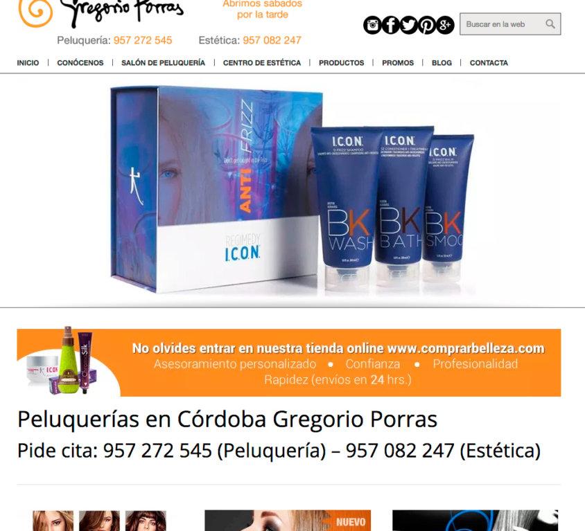 Web Gregorio Porras